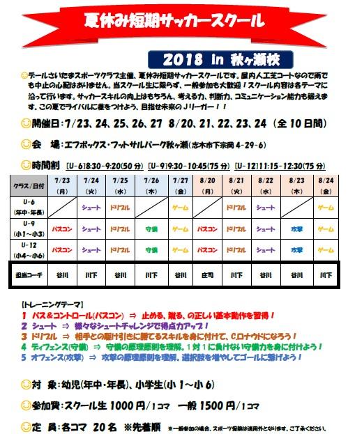 2018夏休み短期サッカースクール